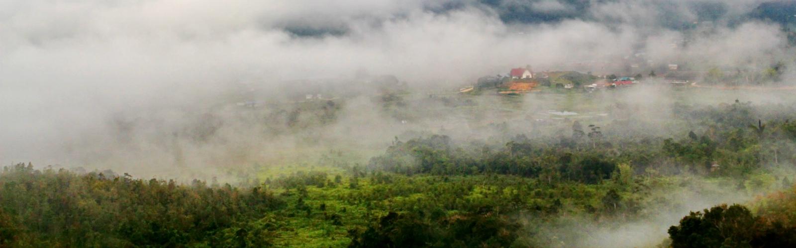 een vliegticket naar het prachtige Borneo?